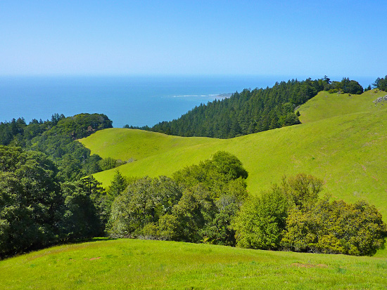 Miles of open hills and ocean views on the Coastal Trail